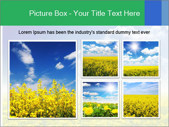 0000080450 PowerPoint Template - Slide 19
