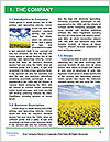 0000080450 Word Template - Page 3