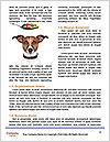 0000080451 Word Template - Page 4