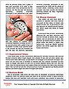 0000080453 Word Templates - Page 4