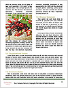 0000080456 Word Templates - Page 4