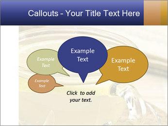 0000080459 PowerPoint Templates - Slide 73