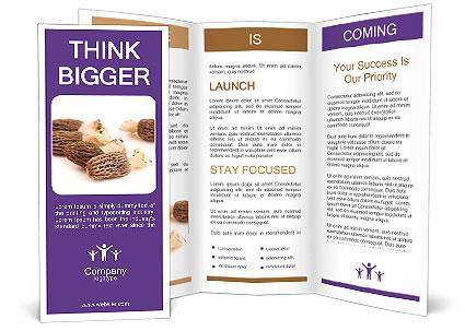 0000080463 Brochure Templates