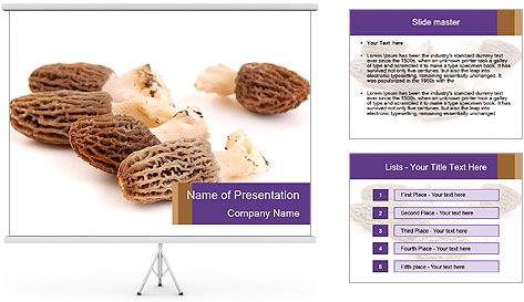 0000080463 PowerPoint Template