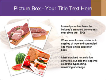 0000080463 PowerPoint Template - Slide 23