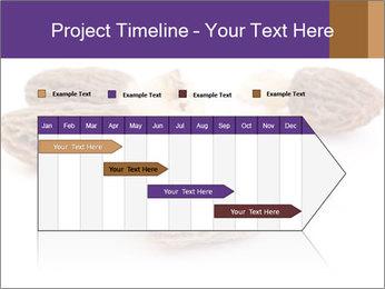 0000080463 PowerPoint Template - Slide 25