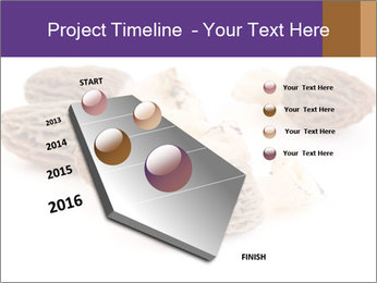 0000080463 PowerPoint Template - Slide 26
