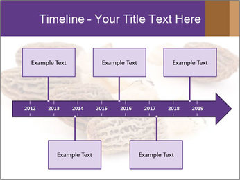 0000080463 PowerPoint Template - Slide 28