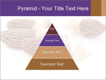 0000080463 PowerPoint Template - Slide 30