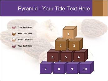 0000080463 PowerPoint Template - Slide 31