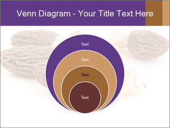 0000080463 PowerPoint Template - Slide 34