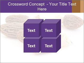 0000080463 PowerPoint Template - Slide 39
