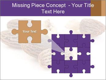 0000080463 PowerPoint Template - Slide 45