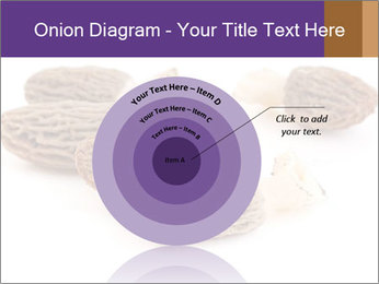 0000080463 PowerPoint Template - Slide 61