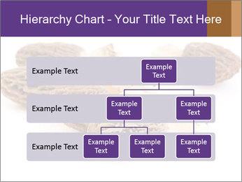 0000080463 PowerPoint Template - Slide 67
