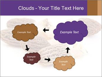 0000080463 PowerPoint Template - Slide 72