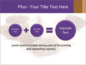 0000080463 PowerPoint Template - Slide 75