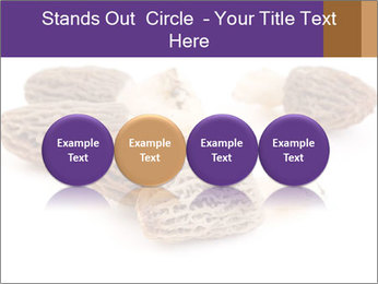 0000080463 PowerPoint Template - Slide 76