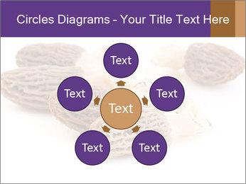 0000080463 PowerPoint Template - Slide 78