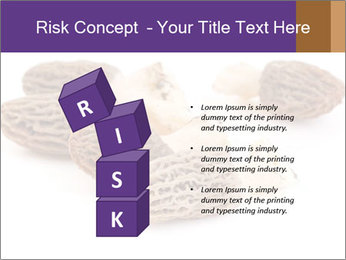 0000080463 PowerPoint Template - Slide 81