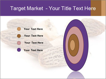 0000080463 PowerPoint Template - Slide 84