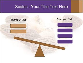 0000080463 PowerPoint Template - Slide 89