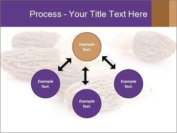 0000080463 PowerPoint Template - Slide 91