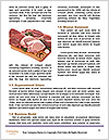 0000080463 Word Templates - Page 4