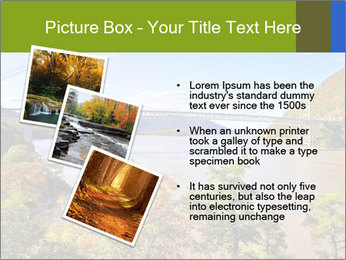 0000080467 PowerPoint Template - Slide 17