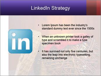 0000080470 PowerPoint Template - Slide 12