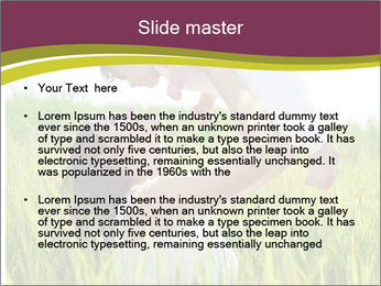 0000080471 PowerPoint Template - Slide 2
