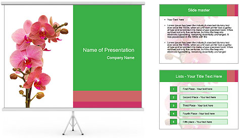 0000080476 PowerPoint Template