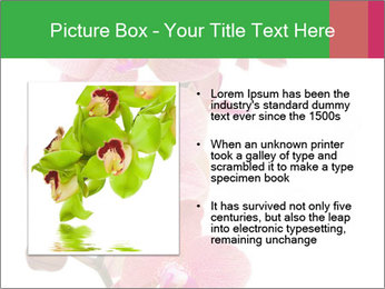 0000080476 PowerPoint Template - Slide 13
