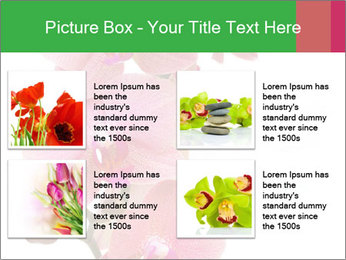 0000080476 PowerPoint Template - Slide 14