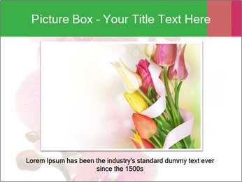 0000080476 PowerPoint Template - Slide 15
