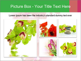 0000080476 PowerPoint Template - Slide 19