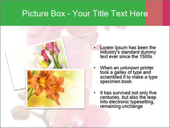 0000080476 PowerPoint Template - Slide 20