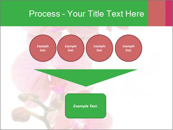 0000080476 PowerPoint Template - Slide 93