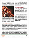 0000080477 Word Template - Page 4