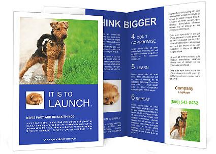 0000080480 Brochure Template