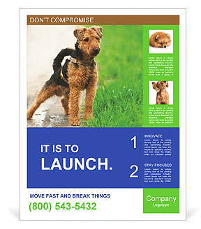 0000080480 Poster Templates