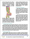 0000080481 Word Template - Page 4