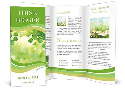 0000080482 Brochure Templates