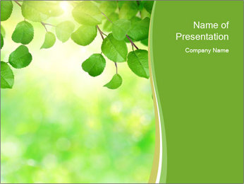 0000080482 PowerPoint Template - Slide 1