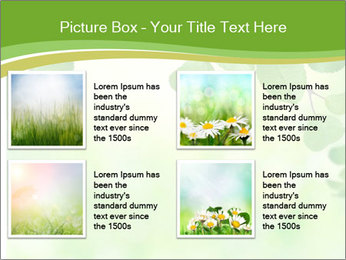 0000080482 PowerPoint Template - Slide 14