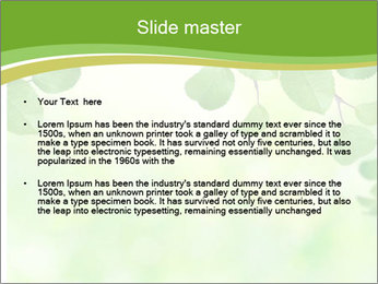 0000080482 PowerPoint Template - Slide 2
