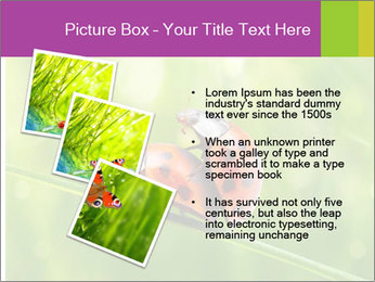 0000080487 PowerPoint Templates - Slide 17