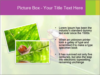0000080487 PowerPoint Template - Slide 20