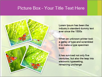 0000080487 PowerPoint Templates - Slide 23