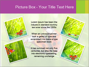 0000080487 PowerPoint Templates - Slide 24